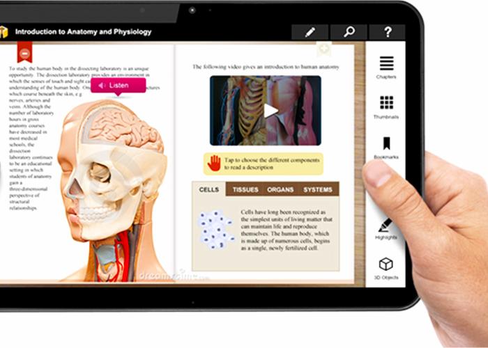 persona viendo pdf de anatomia a traves de una tablet